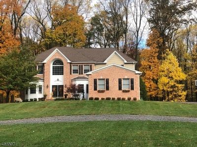 Hillsborough Twp. Single Family Home For Sale: 325 Long Hill Rd