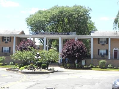 Belleville Twp. Condo/Townhouse For Sale: 725 Joralemon St Unit 198