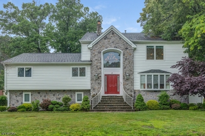 West Orange Twp. Single Family Home For Sale: 49 Edgemont Rd