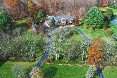 Mendham Boro, Mendham Twp. Single Family Home For Sale: 7 Kendall Ct