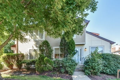 Springfield Twp. Condo/Townhouse For Sale: 3701 Park Pl