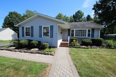 Edison Twp. Single Family Home For Sale: 76 Pacific St