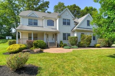 Randolph Twp. Single Family Home For Sale: 13 Blue Bird Ct
