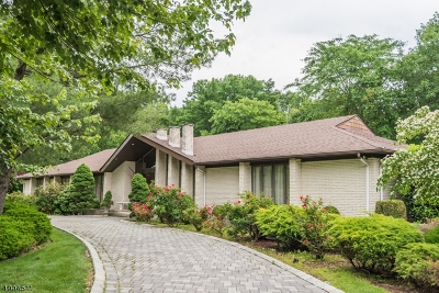 Florham Park Boro Single Family Home For Sale: 170 Brooklake Rd