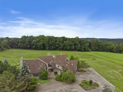 Sussex County Single Family Home For Sale: 175 Warbasse Junction Rd