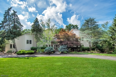 Livingston Twp. Single Family Home For Sale: 17 Canoe Brook Dr