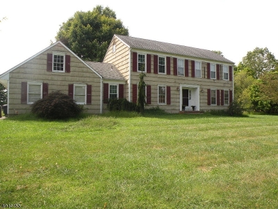 Readington Twp. Single Family Home For Sale: 1 Blackberry Ln