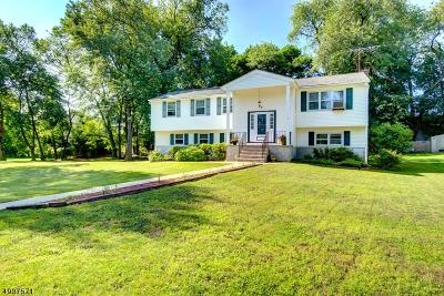 Montville Twp. NJ Single Family Home For Sale: $474,888