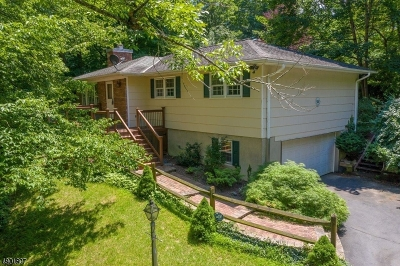 Milford Boro Single Family Home For Sale: 176 Mount Nebo Road