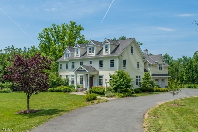 Mendham Boro, Mendham Twp. Single Family Home For Sale: 60 Ironia Rd