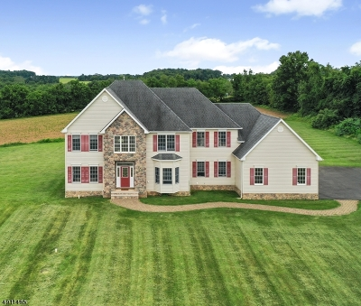 Franklin Twp. Single Family Home For Sale: 39 Sky Manor Rd
