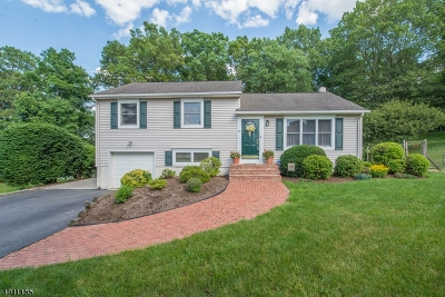 Hanover Twp. Single Family Home For Sale: 44 Countrywood Drive