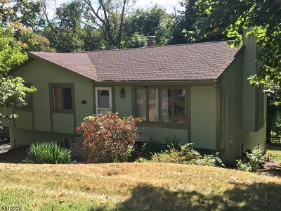 Stanhope Boro Single Family Home For Sale: 20 Maple Ter