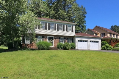 Parsippany-Troy Hills Twp. Single Family Home For Sale: 4 Castaby Way