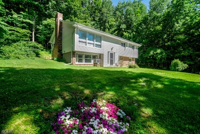 Franklin Boro Single Family Home For Sale: 170 Cork Hill Rd