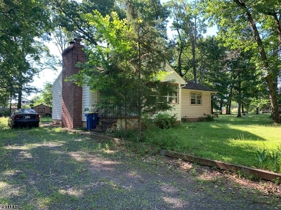 Hillsborough Twp. Single Family Home For Sale: 138 Woods Rd