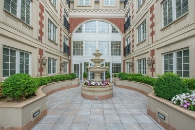 Westfield Town NJ Condo/Townhouse For Sale: $675,000
