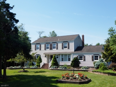Franklin Twp. Single Family Home For Sale: 457 Skillmans Ln