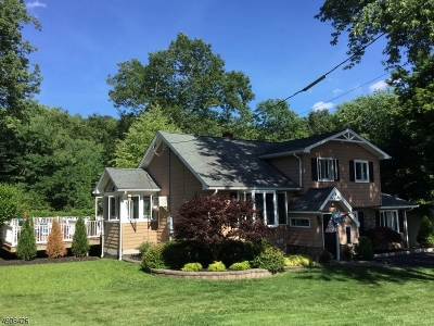 Stanhope Boro Single Family Home For Sale: 9 James St