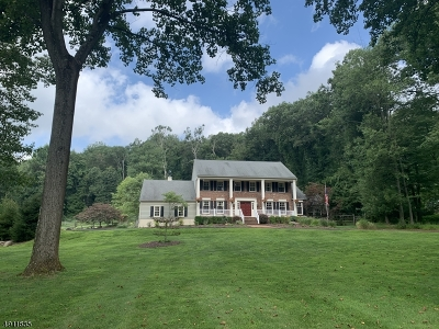 Chester Twp. NJ Single Family Home For Sale: $899,000