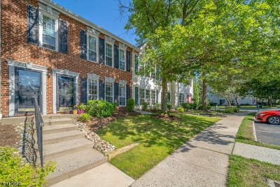 Franklin Park Condo/Townhouse For Sale: 87 Gregory Ln