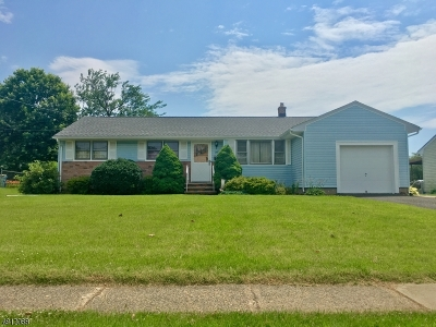Raritan Boro Single Family Home For Sale: 260 Weiss Ter