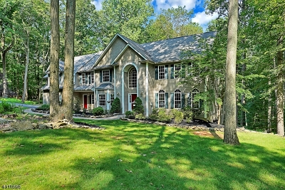 Tewksbury Twp. Single Family Home For Sale: 12 Mountain Rd