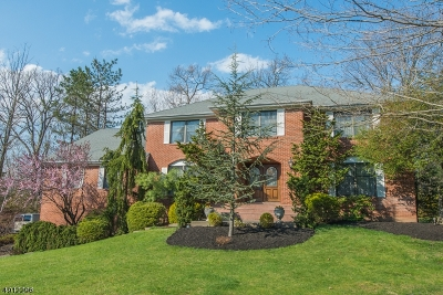 Montville Twp. Single Family Home For Sale: 1 Country Brook Dr