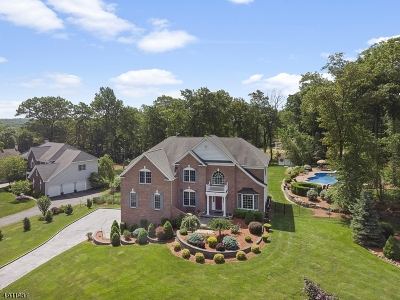 Mount Olive Twp. Single Family Home For Sale: 27 Sovereign Dr