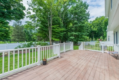 Mount Olive Twp. Single Family Home For Sale: 11 Jennies Ln