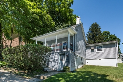 Newton Town Single Family Home For Sale: 31 Union Pl