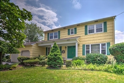 South Brunswick Twp. Single Family Home For Sale: 37 Sand Hills Rd