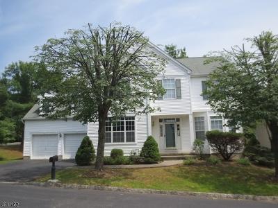 Bernards Twp. Single Family Home For Sale: 2 Revere Dr