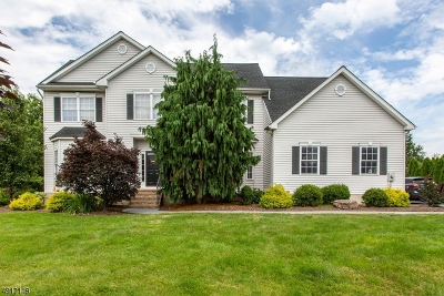 Hillsborough Twp. Single Family Home For Sale: 32 Hughey Ln