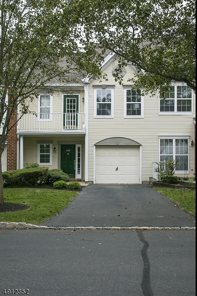 Bridgewater Twp. Condo/Townhouse For Sale: 1604 Stech Dr