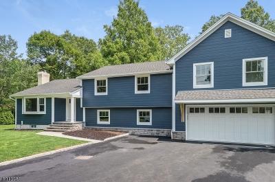 Scotch Plains Twp. Single Family Home For Sale: 44 Fieldcrest Dr