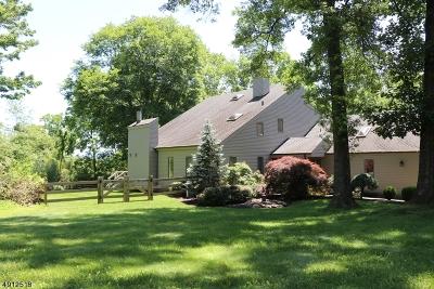 Franklin Twp. Single Family Home For Sale: 16 Doe Run