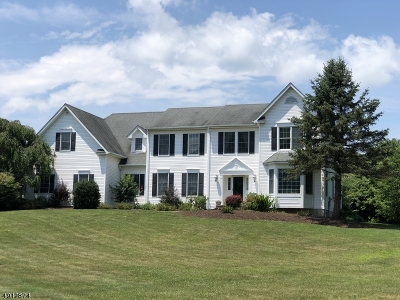 Lafayette Twp. Single Family Home For Sale: 183 Statesville Quarry Rd