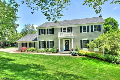 Morristown Town, Morris Twp. Single Family Home For Sale: 10 Canterbury Way