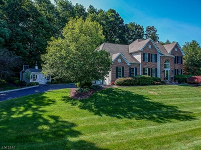 Glen Gardner Boro, Hampton Boro Single Family Home For Sale: 108 Hockenbury Dr