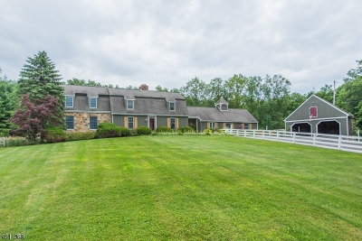 Sussex County Single Family Home For Sale: 47 Gunn Rd