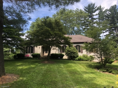 Morristown Town, Morris Twp. Single Family Home For Sale: 12 Woodruff Rd