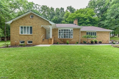 Bridgewater Twp. Single Family Home For Sale: 556 Bittersweet Ter