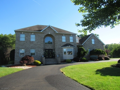 Parsippany-Troy Hills Twp. Single Family Home For Sale: 4 Sunrise Dr