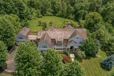 Bernards Twp. NJ Single Family Home For Sale: $2,295,000