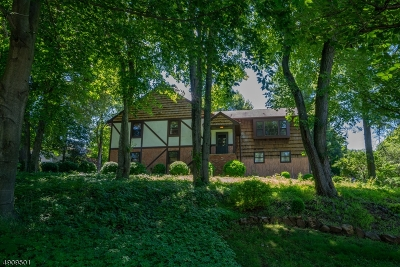 Chatham Twp. Single Family Home For Sale: 39 Meyersville Rd