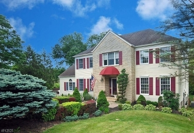 Hunterdon County Single Family Home For Sale: 11 Drake Ct