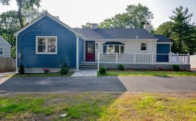 Morris Plains Boro Single Family Home For Sale: 82 Littleton Rd