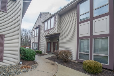 Montville Twp. Condo/Townhouse For Sale: 150 River Road, D3