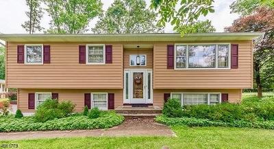 Warren Twp. Single Family Home For Sale: 8 Spencer Ln